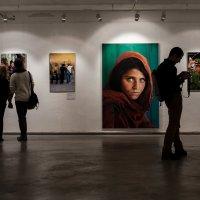 Выставка National Geographic :: Алескандр Номани