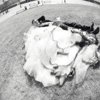 Свадебное :: Aleksey Bolshakov