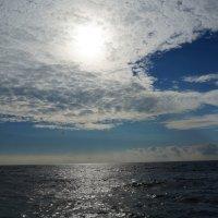 Море :: елена елена