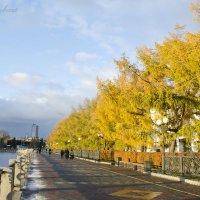 Золотая осень :: Павел Крайовский