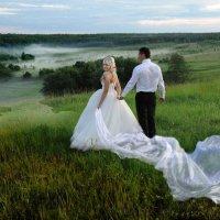 Свадебный вечер :: Владимир Копылов