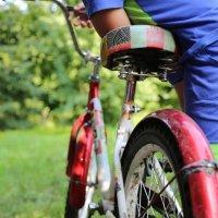 велосипед :: Вера Шат
