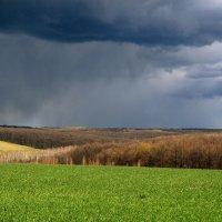 весна :: Юра Птахин