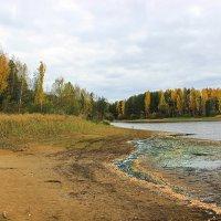 Осень в заливе :: Александр Щеклеин