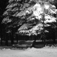 Зима :: Лидия Швец