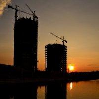 Через четыре года здесь будет город-сад :: Дмитрий Гончаренко