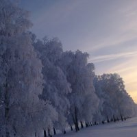 зима :: Анастасия Филиппова