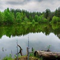 На рыбалке 2 :: Ростислав Бычков