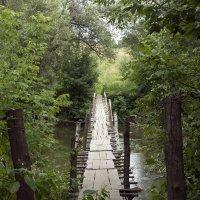 мост через реку Ока :: Max Flynt
