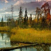 Уходящая осень :: Игорь Чубаров