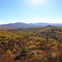 Золотая осень :: Михаил Киреев