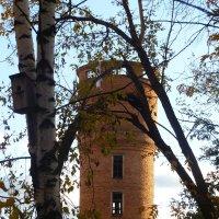 Старая водонапорная башня. :: НАДЕЖДА КЛАДЧИХИНА