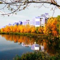 А в Киеве осень v. 5.0 :: Денис Трофимов