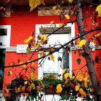 А в Киеве осень... v.8.0. :: Денис Трофимов