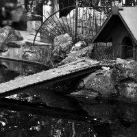 Лебединый дом :: Наталья Дороднова