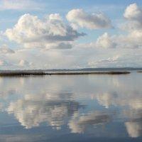 Тишина над Куршским заливом :: Людмила Жданова