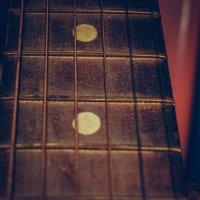 Гитарная струна :: Света Кондрашова