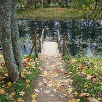 Осень в Пушкинских горах (этюд 2) :: Константин Жирнов