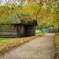 Осень в Пушкинских горах (этюд 3) :: Константин Жирнов