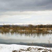 Первый снег :: юрий Амосов
