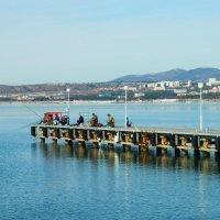 Черноморская зимняя рыбалка. :: Medov Medov