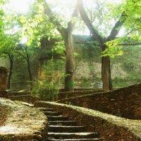 сказочная лестница :: Artem Demenko