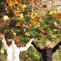 Осеннее настроение :: Анастасия Барляева