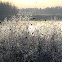 осеннее утро на озере :: Sergey Ganja