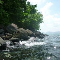 Море :: ирина гунгор