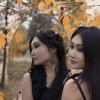 Золотая осень :: Виктория Шафеева