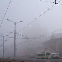 Туман :: Настя me