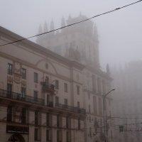 Туманное утро :: Настя me