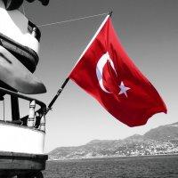 Турляндия :: ARKA OWL