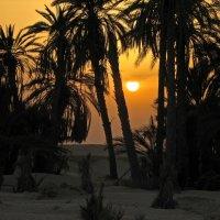 Заход солнца в Сахаре :: максим лыков