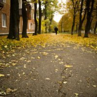 Осень :: Александр Коварский