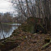 Развалины у пруда. :: Яков Реймер