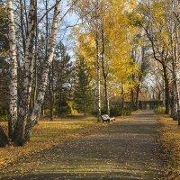 В ботаническом саду Донецка :: Нилла Шарафан