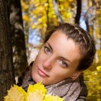осень золотая :: Евгения Порядина