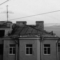 AnTREE :: Алхазур Абубакаров