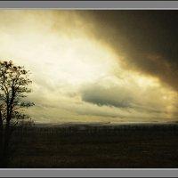 Буря мглою небо кроет :: L Nick