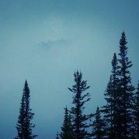 Туман :: Павел Рюмин