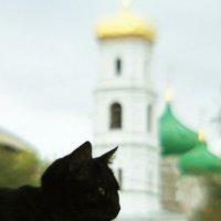 Суеверия и Вера :: Артём Фалин