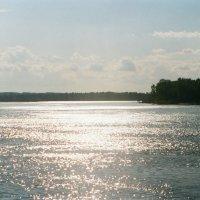 Река Обь. :: Сергей Водяницкий