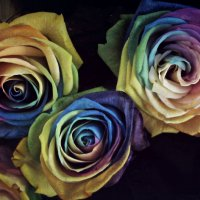Цветы в метро :: Марина Супольникова