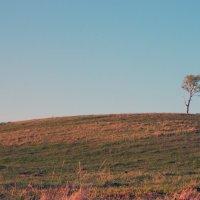 Одиночество :: Руслан Хайдаров