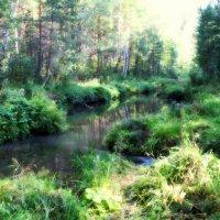 Речка в лесу :: Себастьян Бах