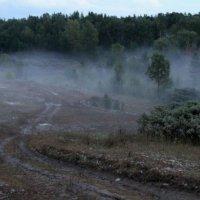 Туман :: Себастьян Бах