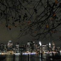 Manhattan :: Татьяна Резник