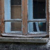 школьное окно... :: Наталья Загорулько