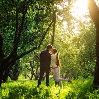 Яблоневый сад :: Елена Капоне